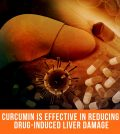 Curcumin Is Effective In Reducing Drug-Induced Liver Damage